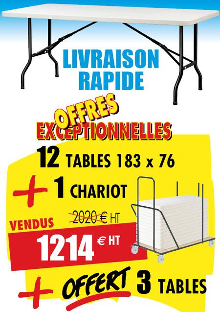 12 tables polyéthylène pliante